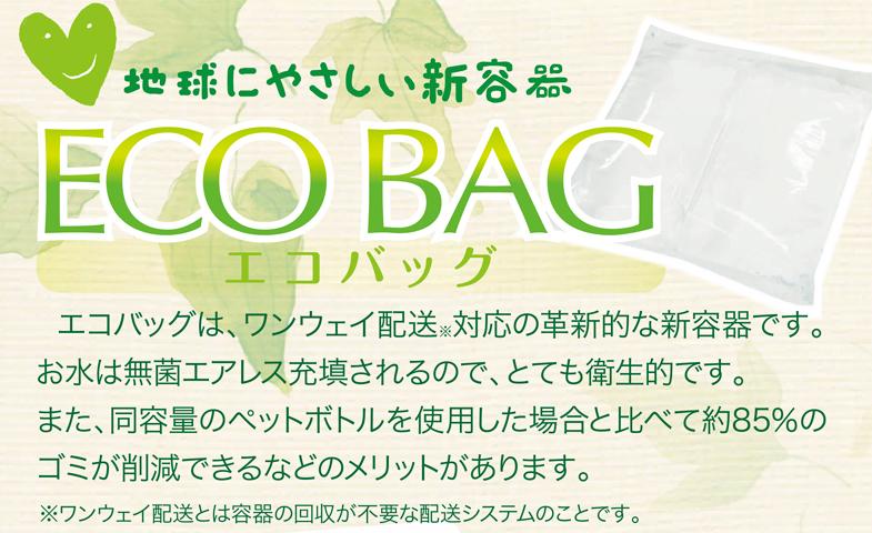 地球にやさしい新容器 ECO BAG エコバッグ
